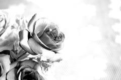 Fleur rose artificielle en noir et blanc Photos libres de droits