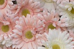 Fleur rose d'objet façonné photos libres de droits
