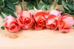 Fleur rose de rose Image libre de droits