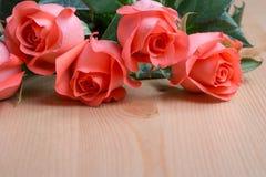 Fleur rose de rose Photographie stock