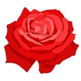 Fleur rose de bande dessinée Images libres de droits