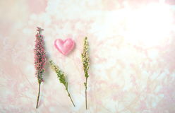Fleur rose de bruyère avec le coeur pour le fond de valentine Image libre de droits
