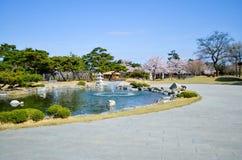 Fleur rose de cerisier et ciel bleu d'espace libre Image libre de droits