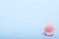 Fleur rose de jouet sur le bleu image libre de droits