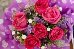 Fleur rose de jour du ` s de Valentine Photo stock