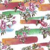 Fleur rose de pivoine de bouquet d'aquarelle Fleur botanique florale Modèle sans couture de fond illustration de vecteur