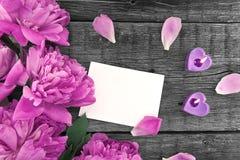 Fleur rose de pivoine sur le fond en bois rustique foncé avec la station thermale de copie Images stock