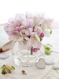 Fleur rose de pomme Image libre de droits