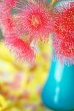 Fleur rose de ressort Images stock