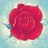 Fleur rose de vintage décoratif Image libre de droits