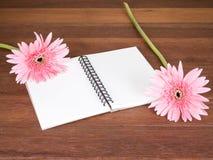 Fleur rose douce de Gerbera dans le navire et le carnet vide 1 Image stock