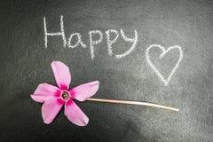 Fleur rose sur un fond noir, le mot illustration stock