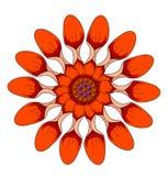 Fleur rouge illustration stock