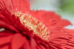 Fleur rouge Photographie stock