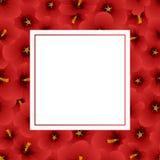 Fleur rouge de ketmie - Rose de Sharon Banner Card Border Illustration de vecteur Illustration Stock