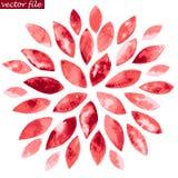 Fleur rouge de rayon de soleil d'aquarelle Photographie stock