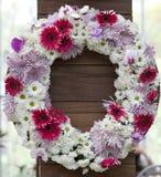 Fleur rouge et blanche Photo stock