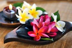 Fleur rouge et blanche de frangipani avec la bougie Photo libre de droits