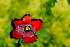 Fleur rouge sur le fond vert Photographie stock