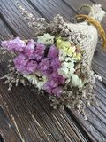 Fleur sèche Photos libres de droits