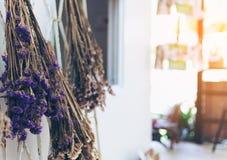 Fleur sèche avec la lumière du soleil pour le fond Style de vintage de photo Photographie stock libre de droits