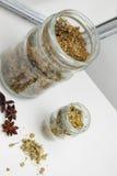 Fleur sèche de camomille, et nigra de Sambucus Photographie stock libre de droits