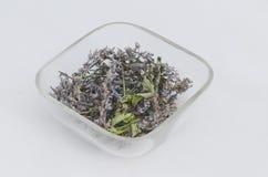 Fleur sèche medicative écologique d'herbe - menthe poivrée (piperita de Mentha) image stock