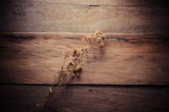 Fleur sèche sur la table en bois - modifiez la tonalité le vintage photo stock