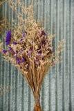 Fleur sèche sur le fond classique Image stock
