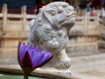 Fleur sacrée Image libre de droits