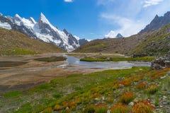 Fleur sauvage au camp de Khuspang avec la crête de Laila, K2 voyage, Pakistan image stock
