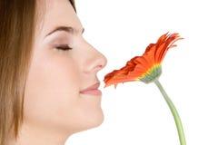 Fleur sentante de femme photos libres de droits