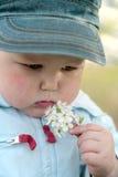 Fleur sentante de petit garçon Photographie stock libre de droits