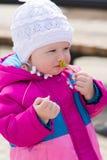 Fleur sentante de petite fille Image libre de droits