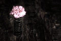 Fleur simple en ressort en métal sur la Co artistique extérieure en bois grunge Photographie stock libre de droits