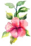 Fleur stylisée de Malva Photo stock
