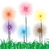 Fleur sur l'herbe illustration de vecteur