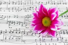 Fleur sur la musique de feuille Photos libres de droits