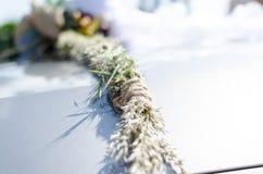Fleur sur la voiture Photographie stock