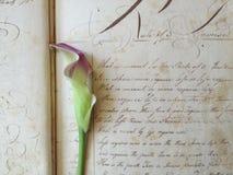 Fleur sur le cahier du 18ème siècle Photographie stock libre de droits
