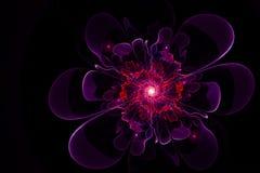 fleur sur le fond Image libre de droits