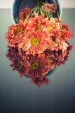 Fleur sur le fond de miroir Images stock