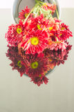 Fleur sur le fond de miroir Photographie stock