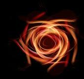 Fleur sur le noir photos libres de droits