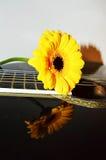 Fleur sur une guitare Photographie stock libre de droits