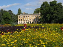 Fleur-Tapis dans des jardins de Kew Images libres de droits