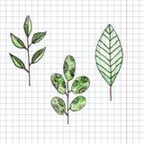 Fleur tirée par la main et couleur graphique verte de feuille Illustration de Vecteur