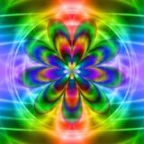 Fleur translucide Images libres de droits