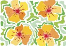 Fleur tropicale de plage - jaune Photographie stock libre de droits