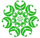 Fleur verte d'imagination sur un fond blanc Configuration de source Photographie stock libre de droits